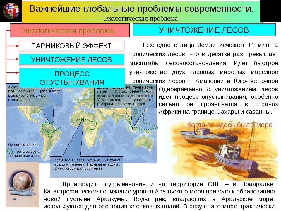 Важнейшие глобальные проблемы современности. Экологическая проблема. ПАРНИКОВ...