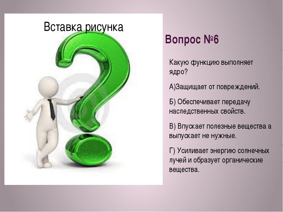 Вопрос №6 Какую функцию выполняет ядро? А)Защищает от повреждений. Б) Обеспеч...