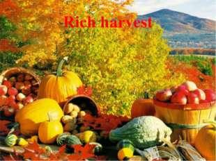 Rich harvest