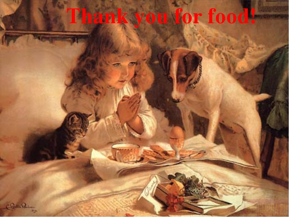 Thank you for food!