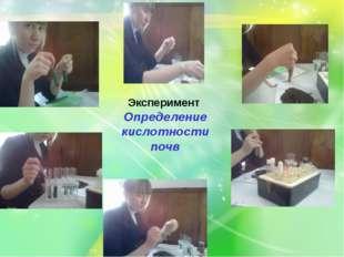 Эксперимент Определение кислотности почв