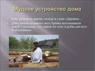 Избу рубили из дерева, отсюда и слово «Деревня» . Дом строили из живого леса.