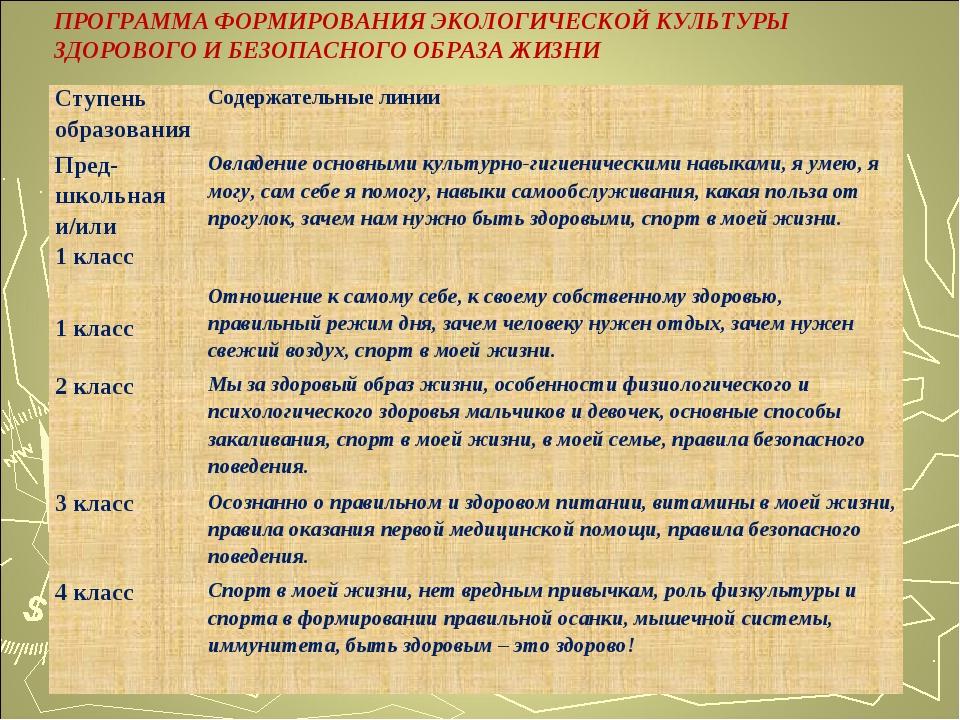 ПРОГРАММА ФОРМИРОВАНИЯ ЭКОЛОГИЧЕСКОЙ КУЛЬТУРЫ ЗДОРОВОГО И БЕЗОПАСНОГО ОБРАЗА...