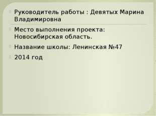 Руководитель работы : Девятых Марина Владимировна Место выполнения проекта: Н