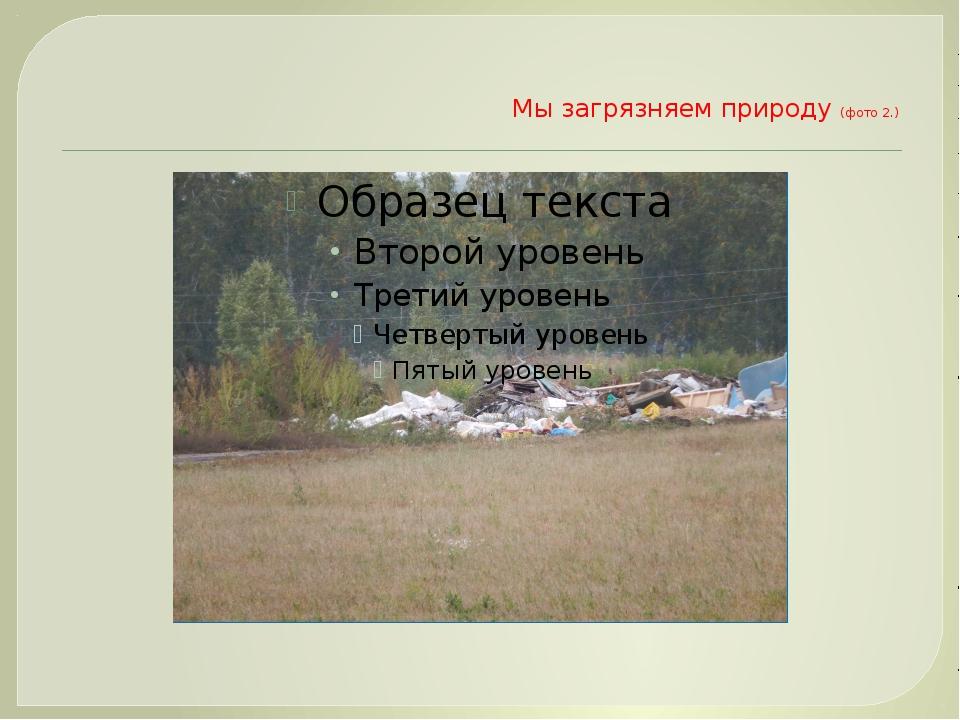 Мы загрязняем природу (фото 2.)