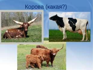 Корова (какая?)
