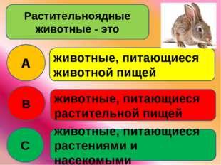 Растительноядные животные - это A B C животные, питающиеся животной пищей жив