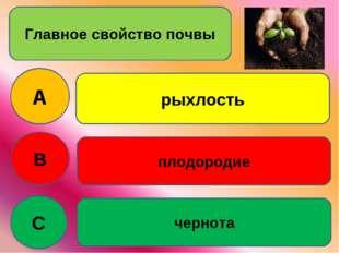 Главное свойство почвы A B C рыхлость плодородие чернота