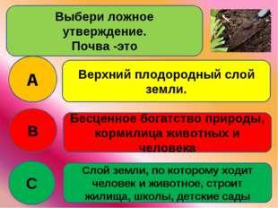 Выбери ложное утверждение. Почва -это A B C Верхний плодородный слой земли. Б