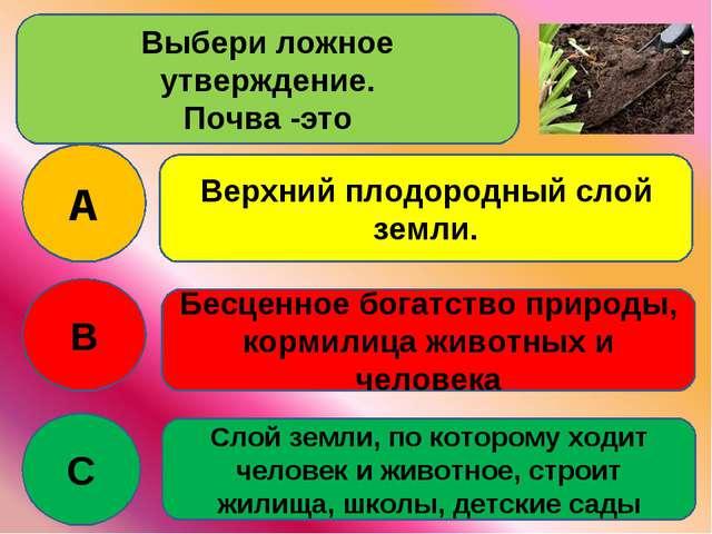 Выбери ложное утверждение. Почва -это A B C Верхний плодородный слой земли. Б...