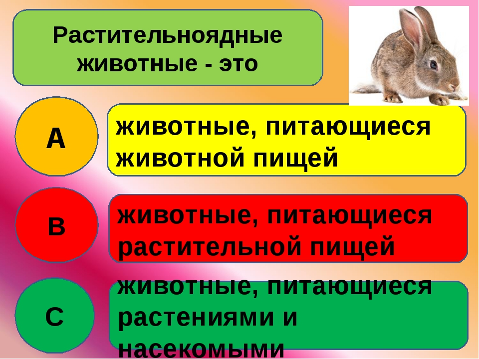 Растительноядные животные - это A B C животные, питающиеся животной пищей жив...