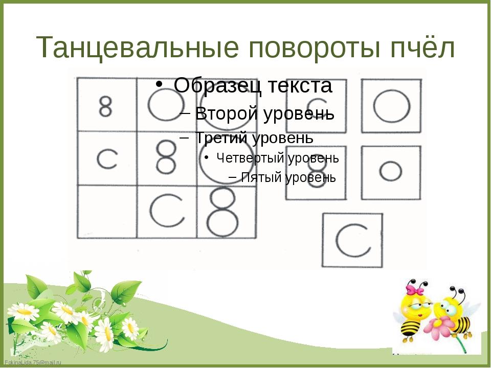 Танцевальные повороты пчёл FokinaLida.75@mail.ru