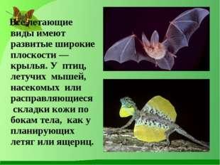 Все летающие виды имеют развитые широкие плоскости — крылья. У птиц, летучих