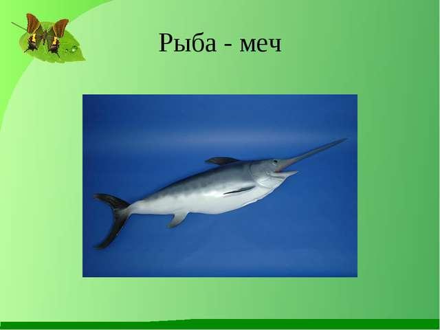 Рыба - меч