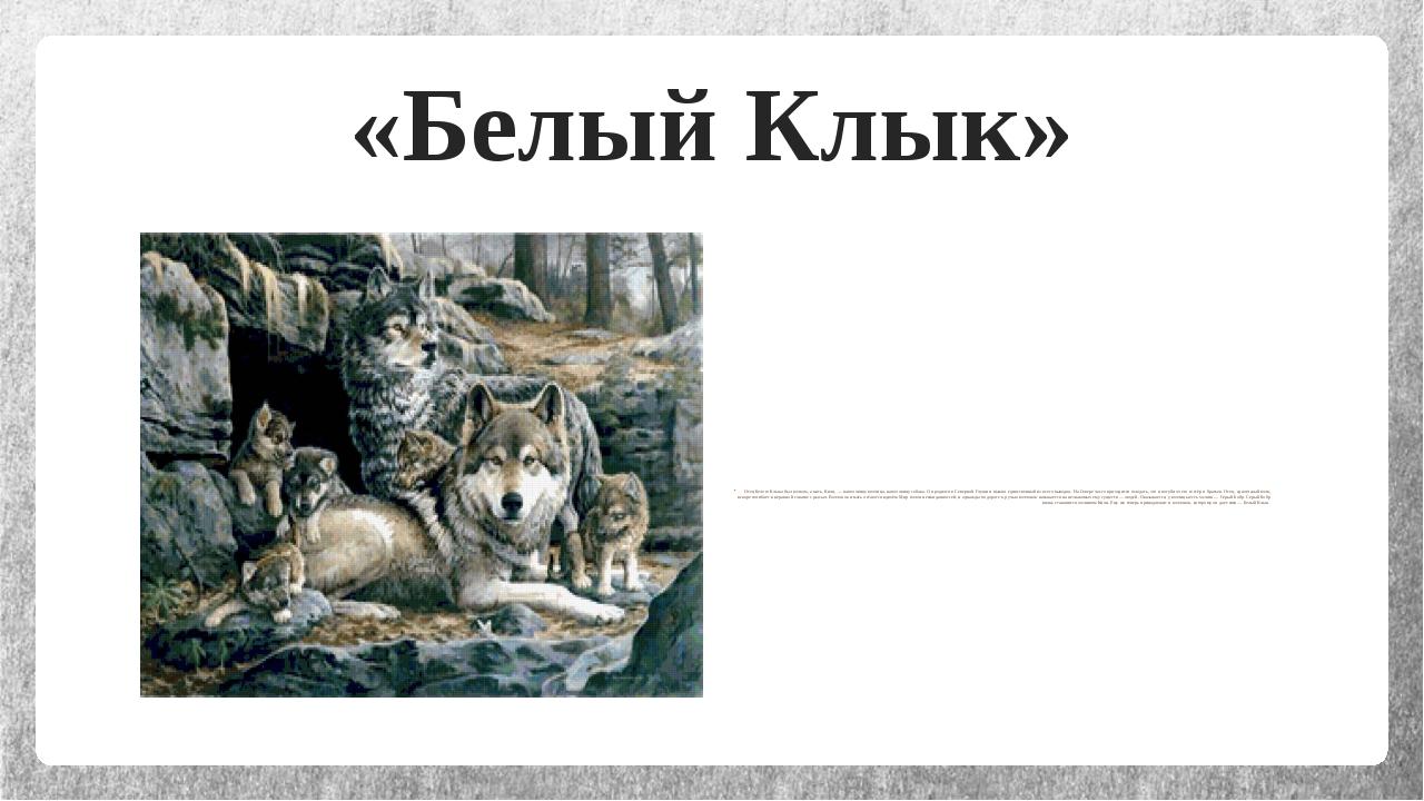 «Белый Клык» Отец Белого Клыка был волком, а мать, Кичи,— наполовину волчица...