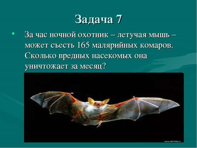 Задача 7 За час ночной охотник – летучая мышь – может съесть 165 малярийных к...