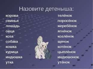 Назовите детеныша: корова свинья лошадь овца коза собака кошка курица индюшка