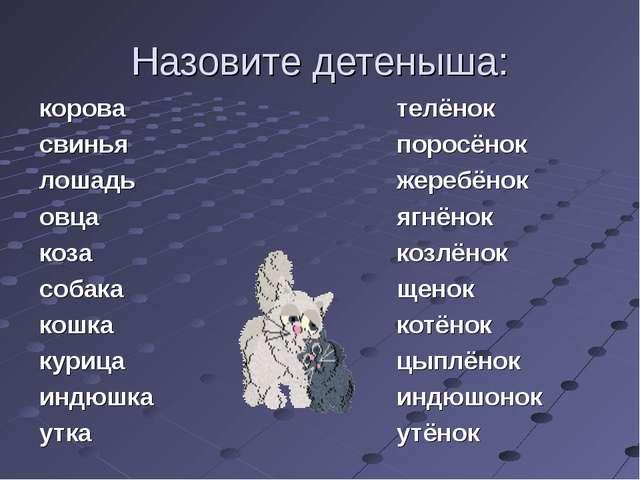 Назовите детеныша: корова свинья лошадь овца коза собака кошка курица индюшка...