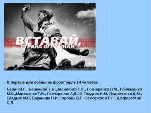 В первые дни войны на фронт ушли 14 человек: Бабич Я.Г., Бережной Т.Я.,Василе
