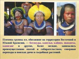 Племена группы же, обитавшие на территории Восточной и Южной Бразилии, — бото