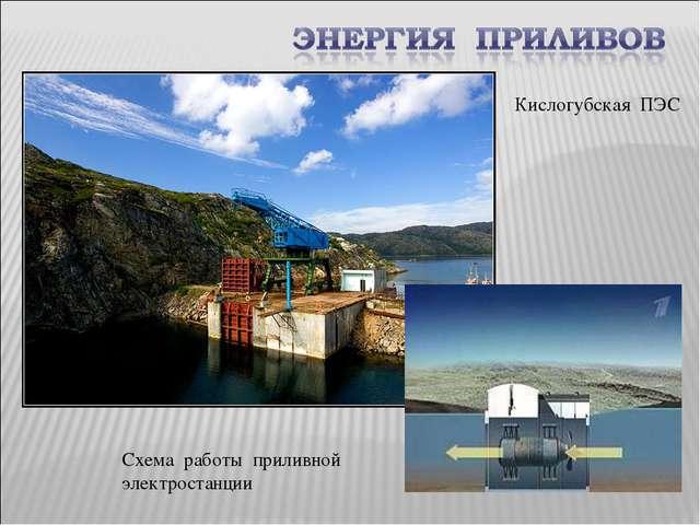 Кислогубская ПЭС Схема работы приливной электростанции
