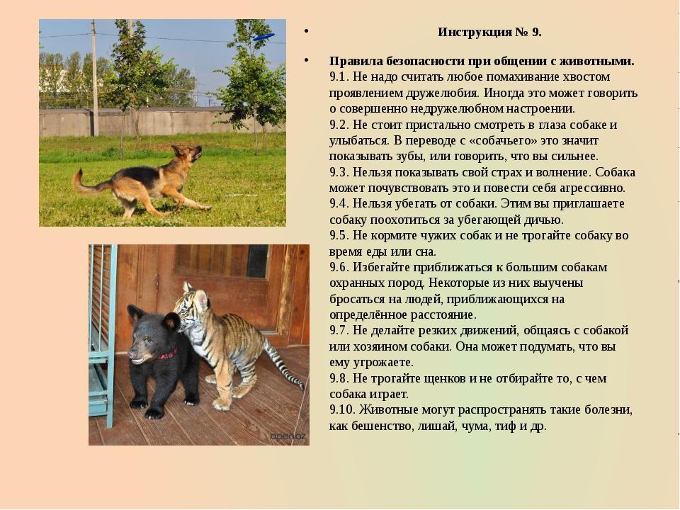 Инструкция № 9. Правила безопасности при общении с животными. 9.1. Не надо с...