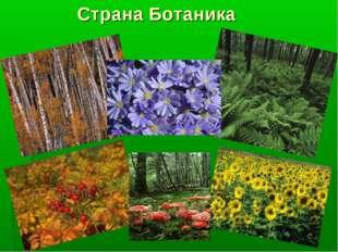 Страна Ботаника