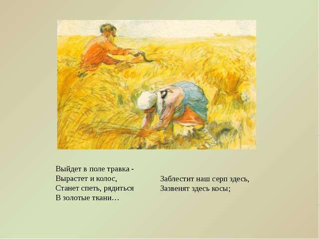 Выйдет в поле травка - Вырастет и колос, Станет спеть, рядиться В золотые тка...