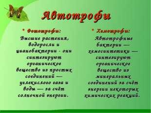 Автотрофы Фототрофы: Высшие растения, водоросли и цианобактерии - они синтези
