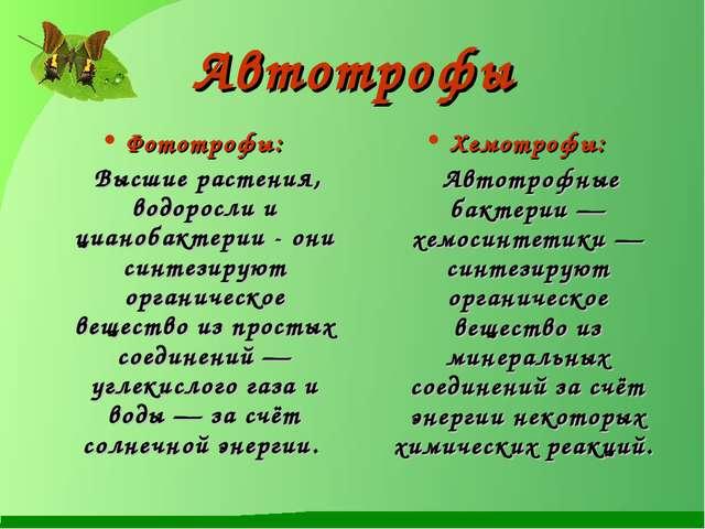 Автотрофы Фототрофы: Высшие растения, водоросли и цианобактерии - они синтези...
