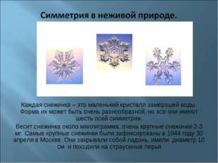 Каждая снежинка – это маленький кристалл замерзшей воды. Форма их может быть