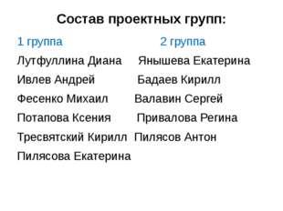 Состав проектных групп: 1 группа 2 группа Лутфуллина Диана Янышева Екатерина