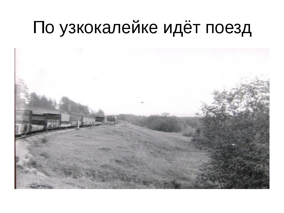 По узкокалейке идёт поезд