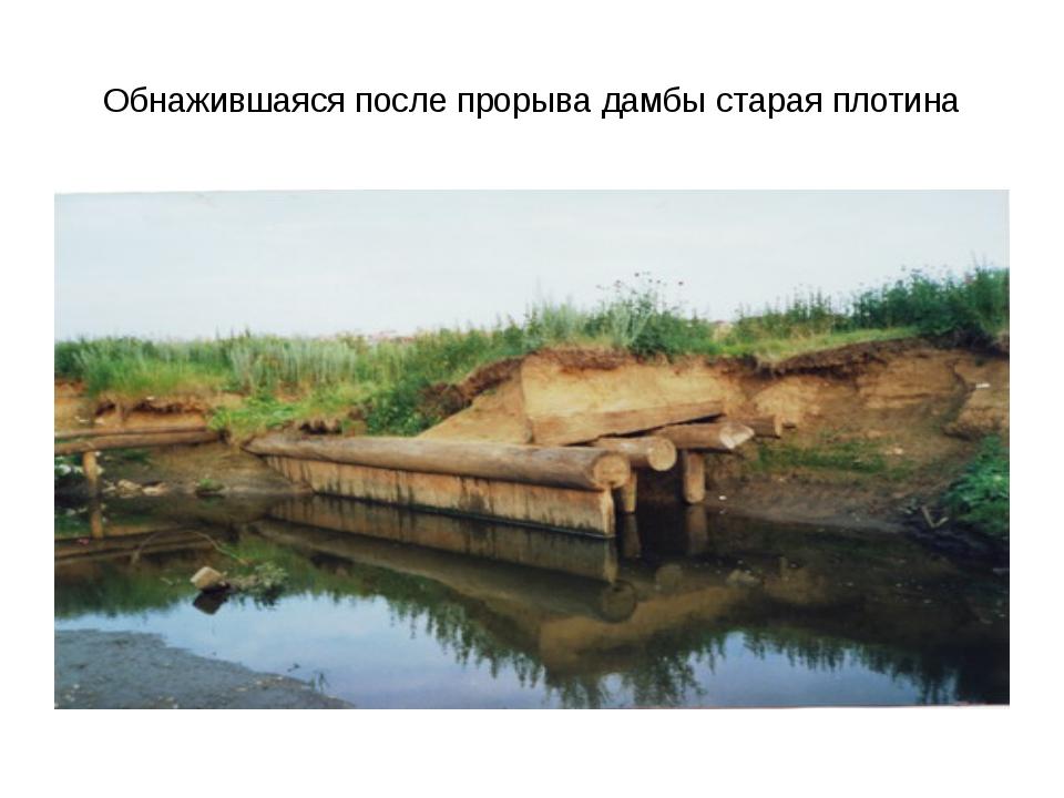Обнажившаяся после прорыва дамбы старая плотина