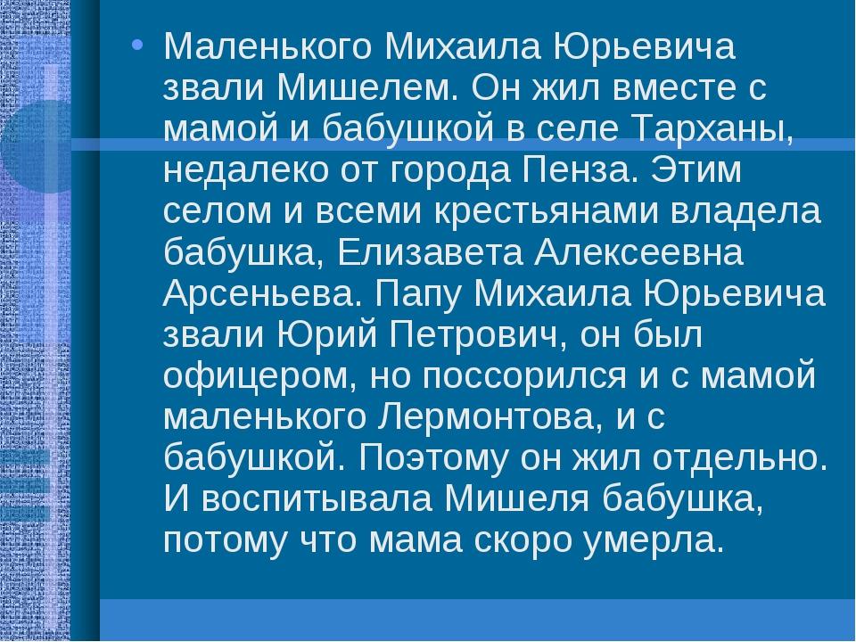 Маленького Михаила Юрьевича звали Мишелем. Он жил вместе с мамой и бабушкой в...