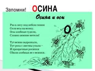 Запомни! ОСИНА