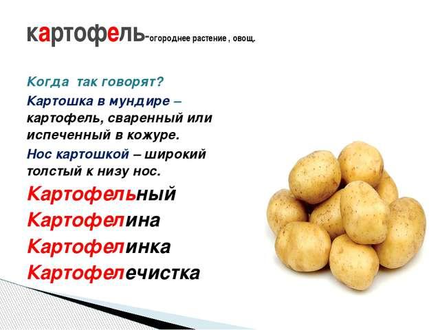 Когда так говорят? Картошка в мундире – картофель, сваренный или испеченный в...