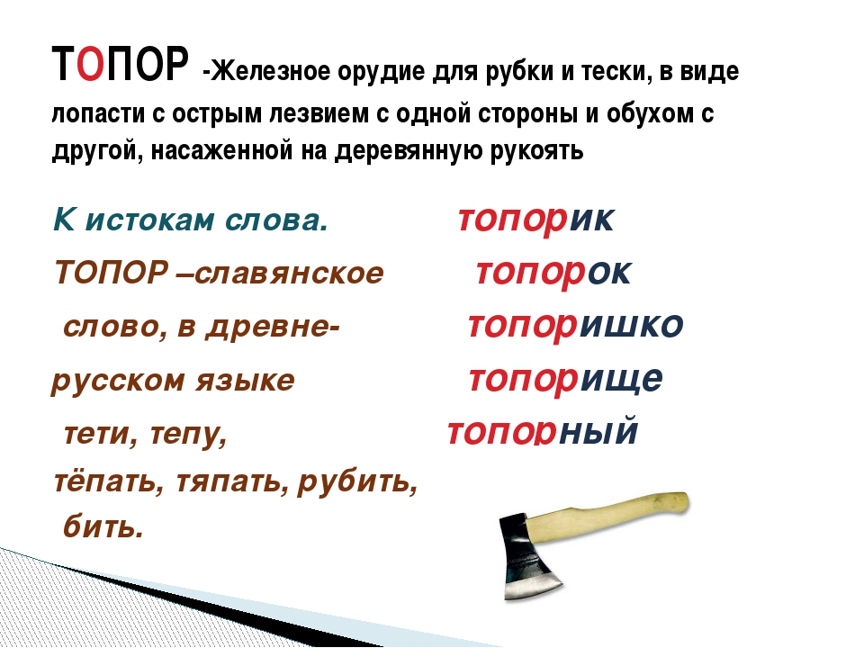 К истокам слова. топорик ТОПОР –славянское топорок слово, в древне- топоришко...