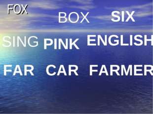 FOX BOX SIX SING PINK ENGLISH FAR CAR FARMER