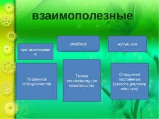 взаимополезные протокооперация Первичное сотрудничество мутуализм симбиоз Отн