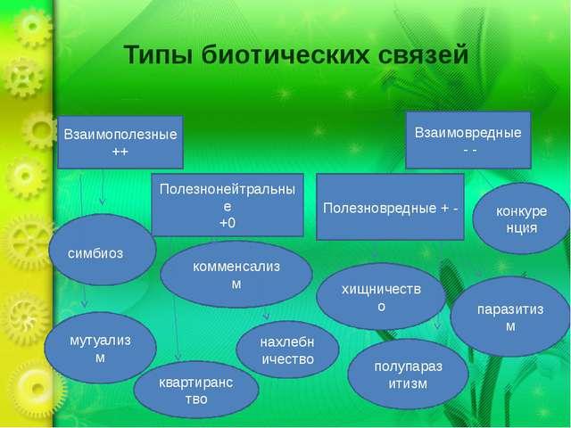 Типы биотических связей Взаимополезные ++ Полезнонейтральные +0 Полезновредны...