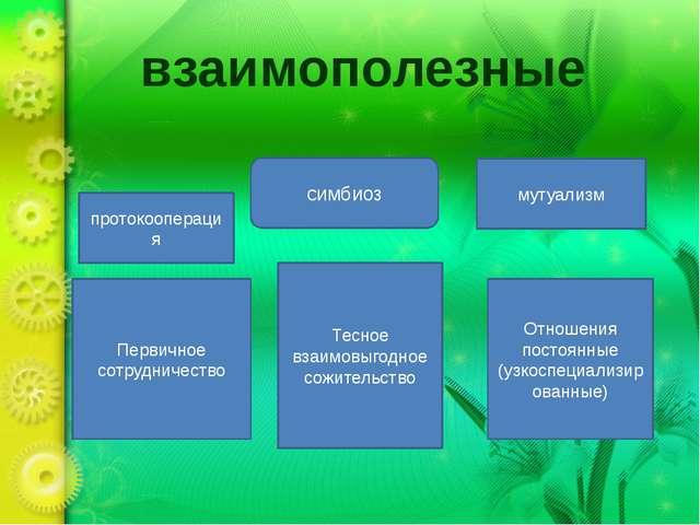 взаимополезные протокооперация Первичное сотрудничество мутуализм симбиоз Отн...