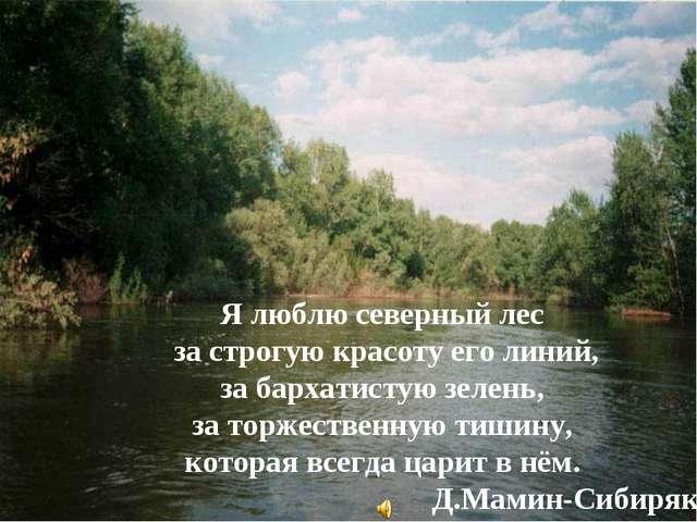 Я люблю северный лес за строгую красоту его линий, за бархатистую зелень, за...