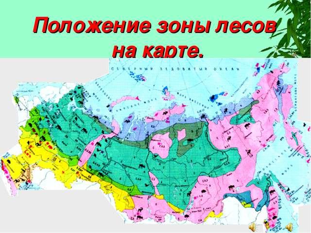 Положение зоны лесов на карте.