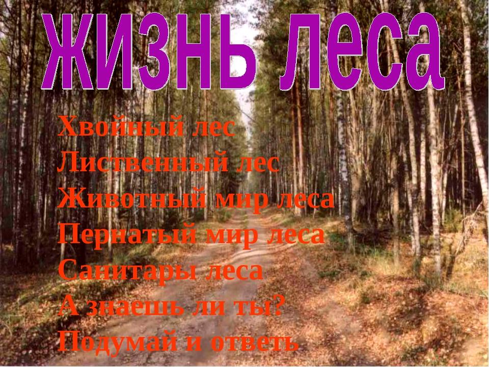 Хвойный лес Лиственный лес Животный мир леса Пернатый мир леса Санитары леса...