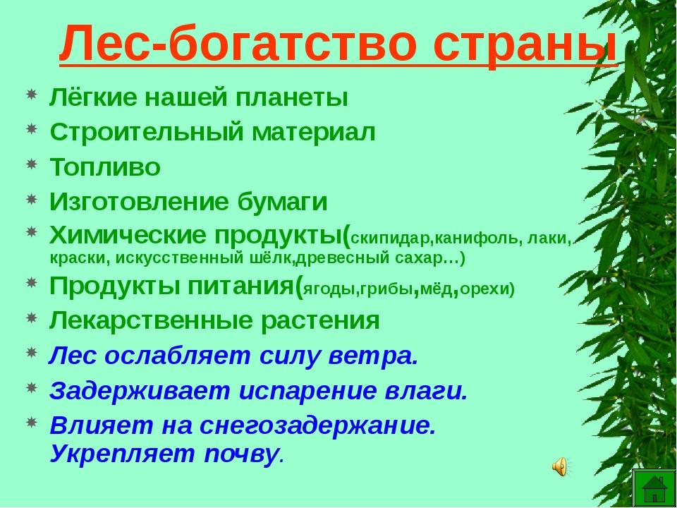 Лес-богатство страны Лёгкие нашей планеты Строительный материал Топливо Изгот...