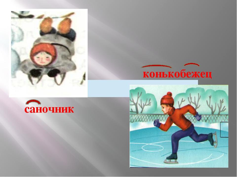 саночник конькобежец