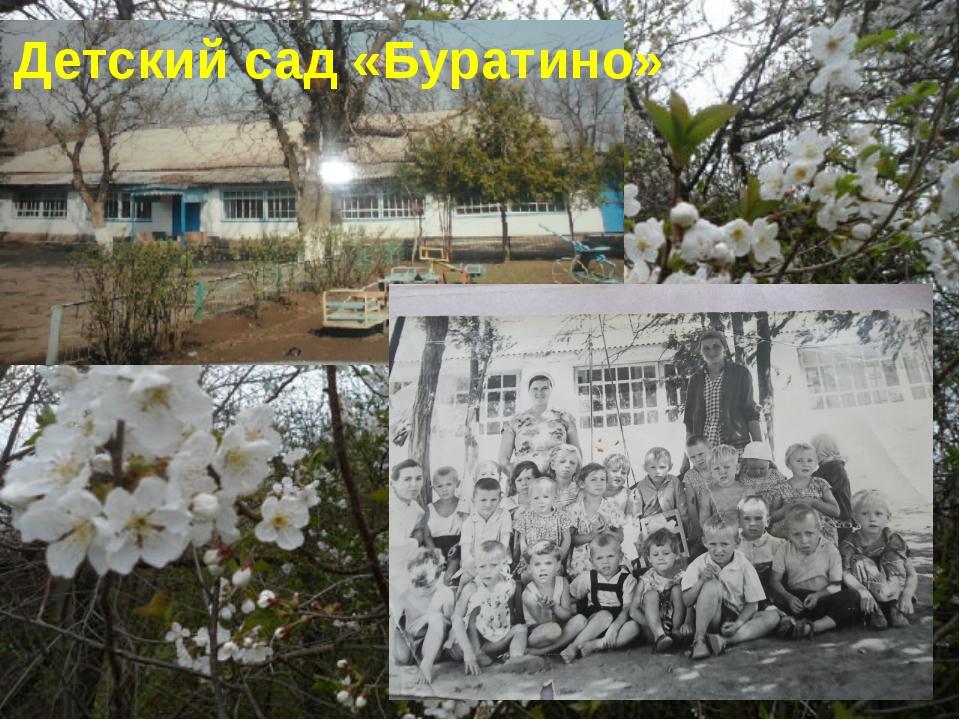 Детский сад «Буратино»