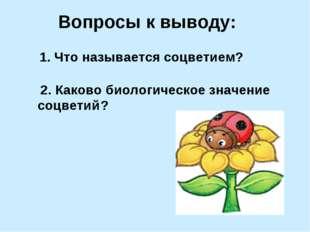 Вопросы к выводу: 1. Что называется соцветием ? 2. Каково биологическое значе