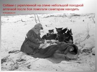 Собаки с укрепленной на спине небольшой походной аптечкой после боя помогали